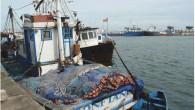 La nouvelle équipe dirigeante du Port Autonome de Cotonou (PAC) entrée en fonction en octobre dernier, a une vision nette de sa gestion : faire de Cotonou une plateforme portuaire […]