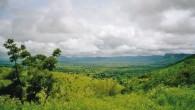 Le Togo est confronté à des problèmes environnementaux majeurs essentiellement liés à la dégradation des ressources naturelles en général et à celle des forêts en particulier. Ainsi note-t-on la régression […]